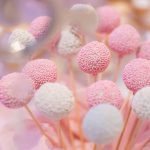 lollipop candy bar www.dolcebyvero.ro Dolce By Vero
